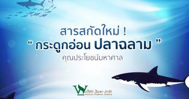 กระดูกอ่อนปลาฉลาม,ประโยชน์ของสารสกัด,ประโยชน์ของกระดูกปลาฉลาม,ประเภทของสารสกัดต่างๆ