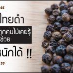 พริกไทยดำ,ประโยชน์ของพริกไทยดำ,ลดน้ำหนักด้วยพริกไทยดำ,ข้อดีของพริกไทยดำ