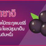 อาซาอิ ที่สุดของผลไม้ตระกูลเบอร์รี่ที่มีคุณประโยชน์สูงมาเป็นอันดับหนึ่ง