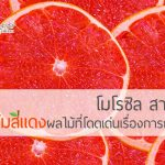 โมโรซิล สารสกัดจากส้มสีแดงผลไม้ที่โดดเด่นเรื่องการกระชับสัดส่วน