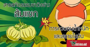 สารสกัดธรรมชาติอย่าง ส้มแขก VS การควบคุมน้ำหนักและสลายไขมัน