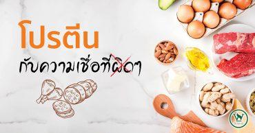 โปรตีน,ประโยชน์ของโปรตีน,สรรพคุณของโปรตีน,อาหารที่มีโปรตีน