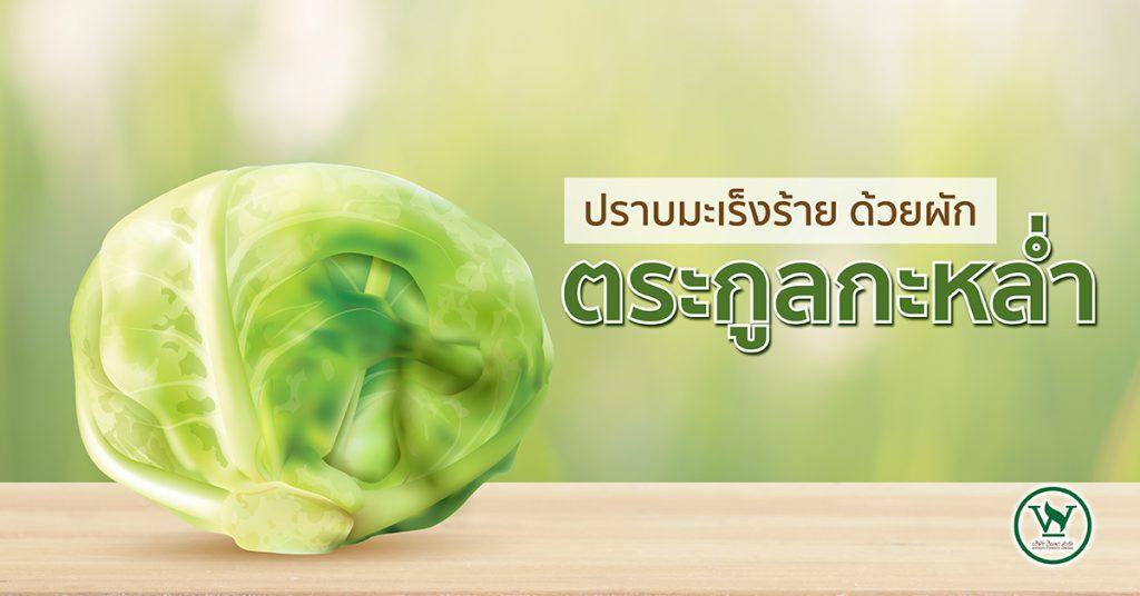 ผักกะหล่ำ,ประโยชน์ของผักกะหล่ำ,สรรพคุณของผักกะหล่ำ
