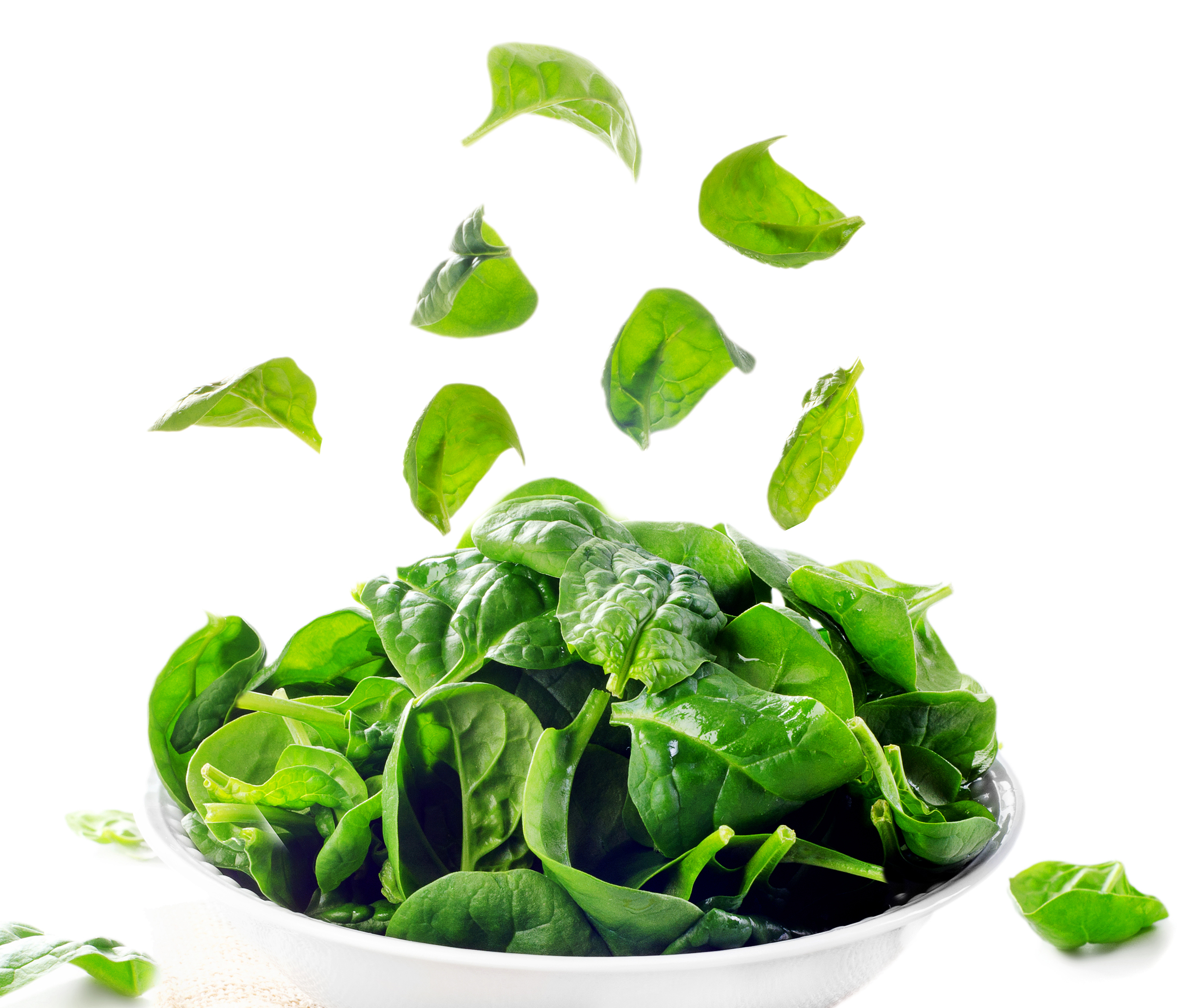 Fresh green spinach leaves isolated on white. Selective focus